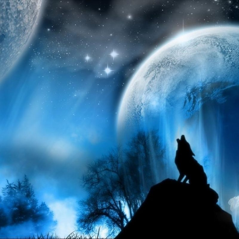 10 New Wolf Howling At The Moon Wallpaper Hd FULL HD 1080p For PC Background 2018 free download wolf howling at the moon wallpapers wallpaper cave 2 800x800