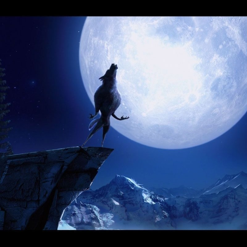 10 Best Werewolf Howling At The Moon Pictures FULL HD 1920×1080 For PC Desktop 2018 free download wolf howling at the moon wallpapers wallpaper cave best games 1 800x800