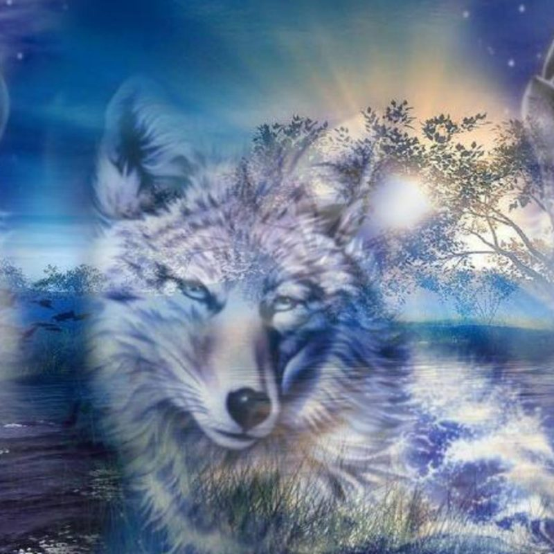10 New Cool Wolf Desktop Backgrounds FULL HD 1080p For PC Background 2018 Free Download