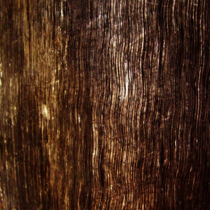10 Latest Wood Grain Phone Wallpaper FULL HD 1080p For PC Background 2020 free download wood grain wallpapers hd wallpaper cave 800x800