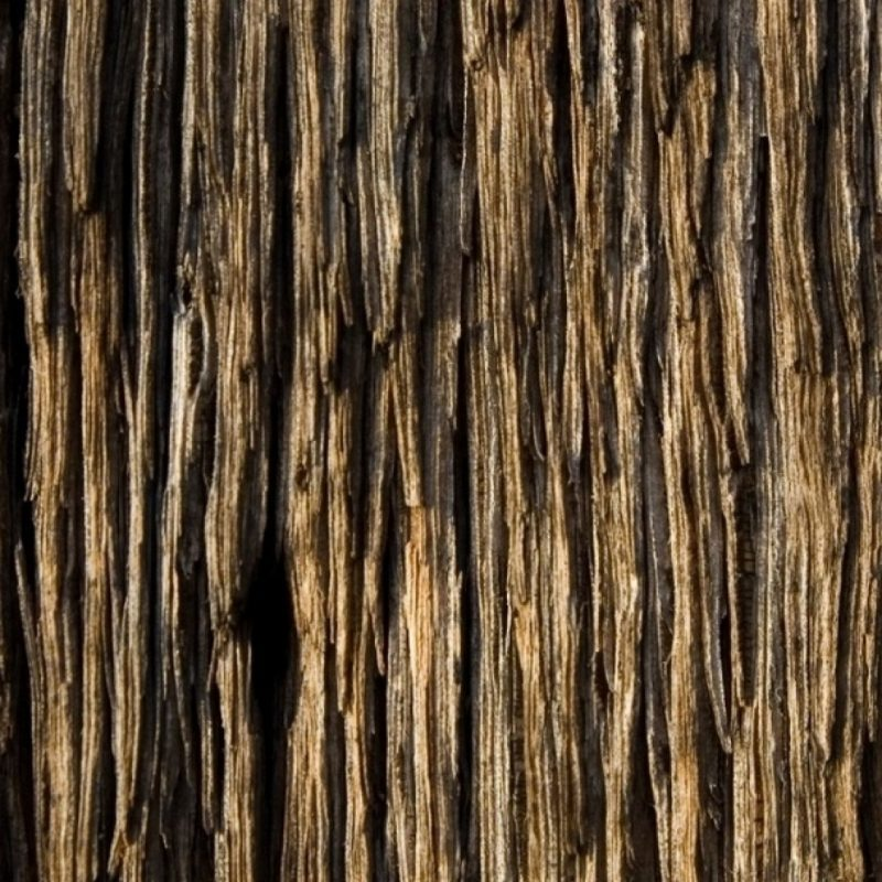 10 Latest Wood Grain Phone Wallpaper FULL HD 1080p For PC Background 2018 free download wood wallpaper for iphone 800x800