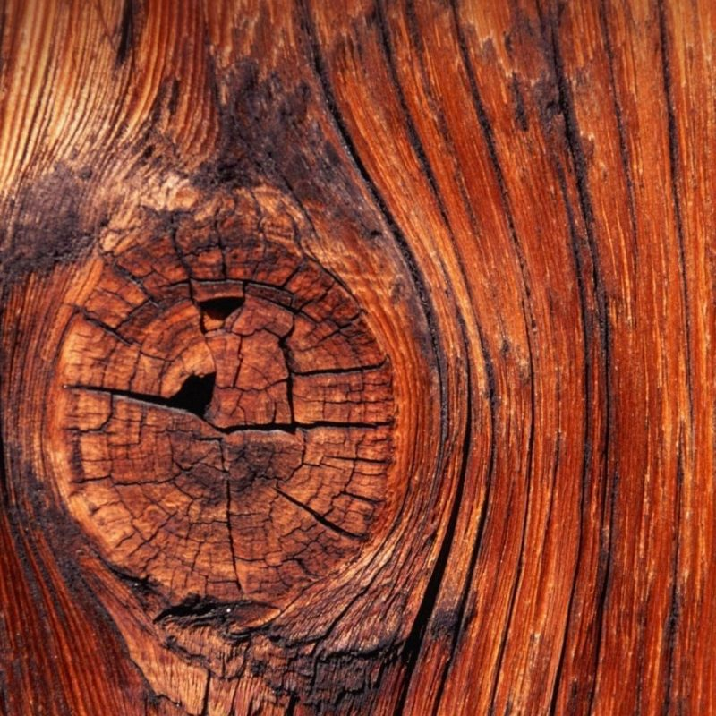 10 Most Popular Wood Desktop Wallpaper Hd FULL HD 1920×1080 For PC Desktop 2018 free download wood widescreen hd wallpapers kbcharleston 1920x1080 wood hd 800x800