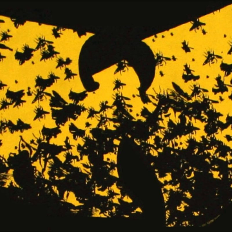 10 Latest Wu Tang Clan Backgrounds FULL HD 1080p For PC Desktop 2020 free download wu tang clan wallpapers wallpaper cave 3 800x800