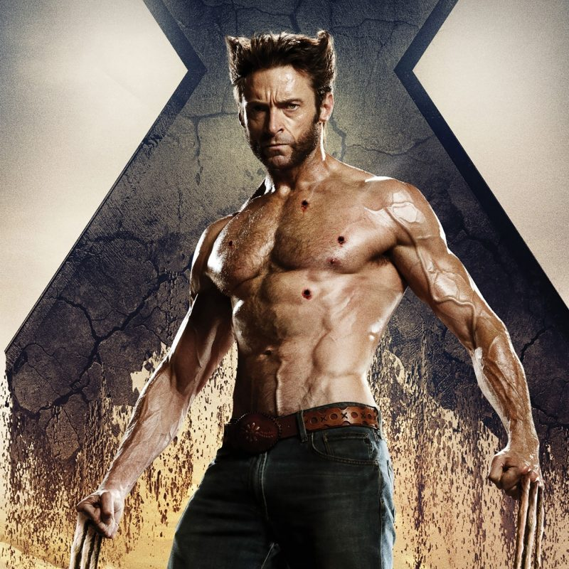10 Most Popular Wolverine Hugh Jackman Wallpaper FULL HD 1080p For PC Background 2018 free download x men days of future past wolverine hugh jackman wallpapers hd 800x800