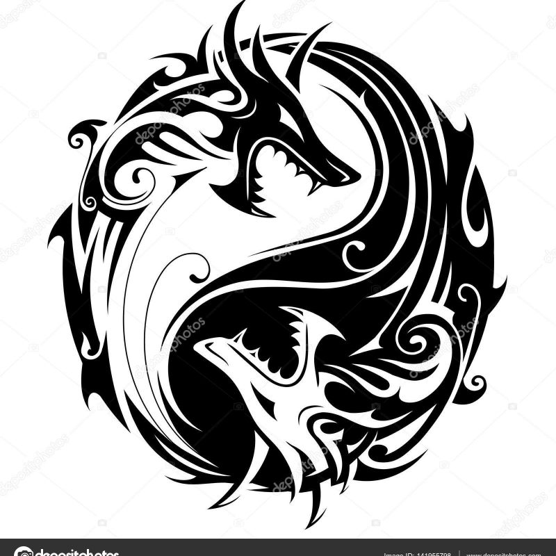 10 Top Yin And Yang Dragons FULL HD 1920×1080 For PC Background 2018 free download yin yang dragons stock vector akv lv 141955798 800x800